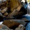 Pre Flume Waterfall