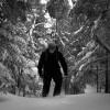 winterHikerBW